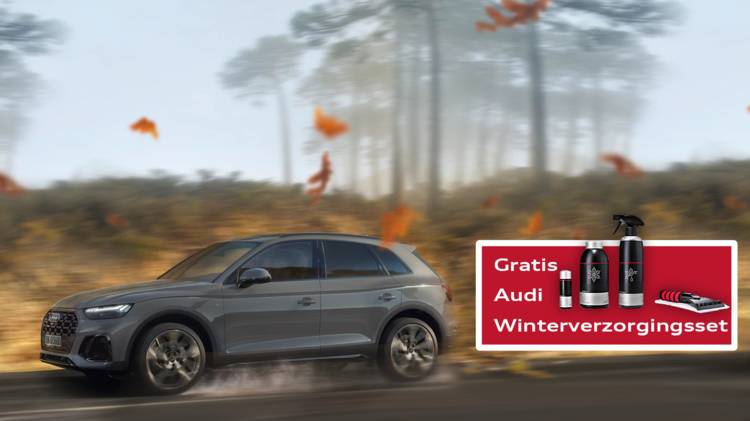 Audi Wintercheck hoofdvisual