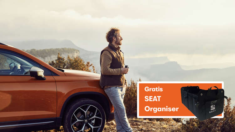 SEAT wintercheck visual - 2020
