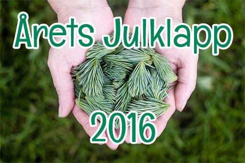 20161208 arets julklapp 2016