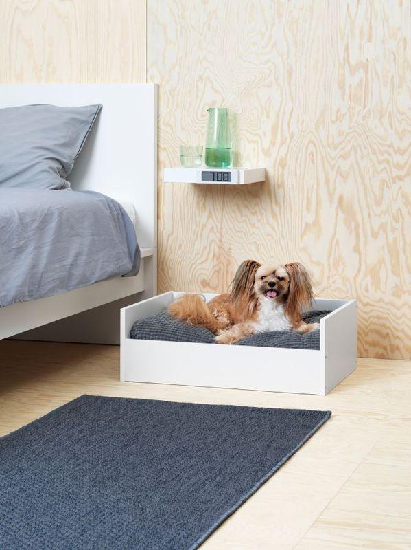 Ikea Wprowadza Pierwszą Kolekcję Akcesoriów Dla Zwierząt Co