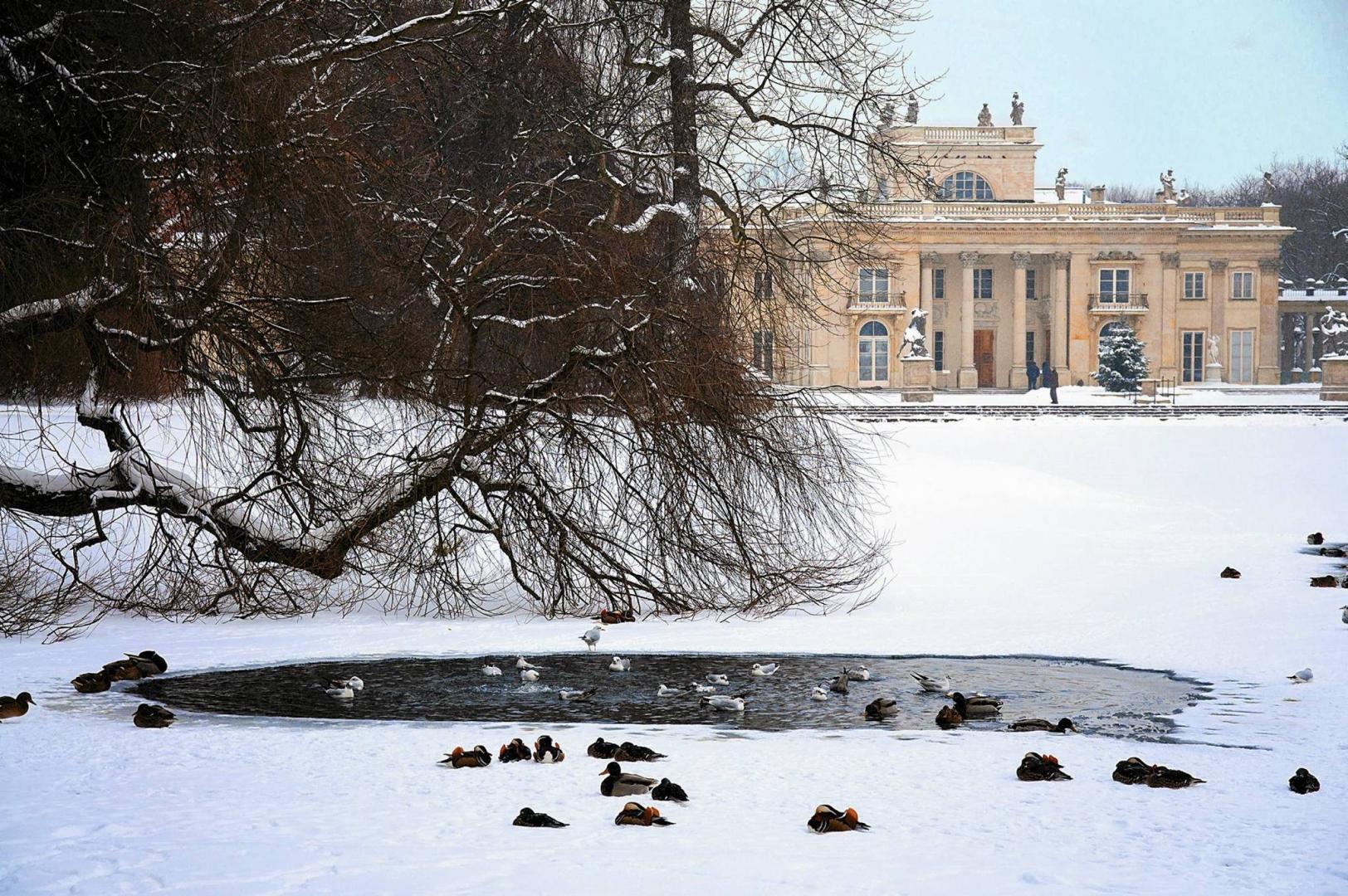 Warszawskie łazienki Zimą