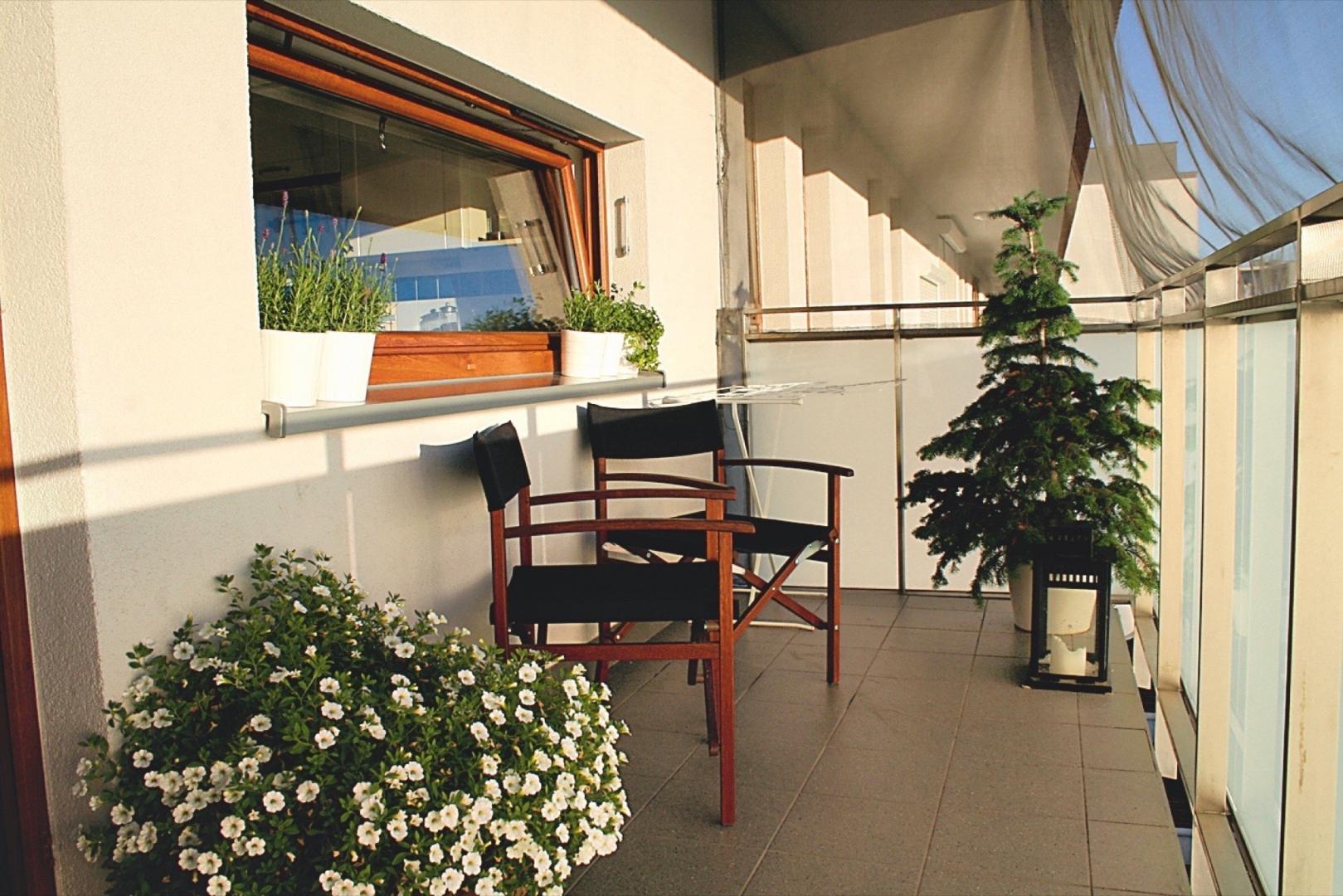 Balkon Dla Rodziny I Kotów Balkon Od Południowego Zachodu