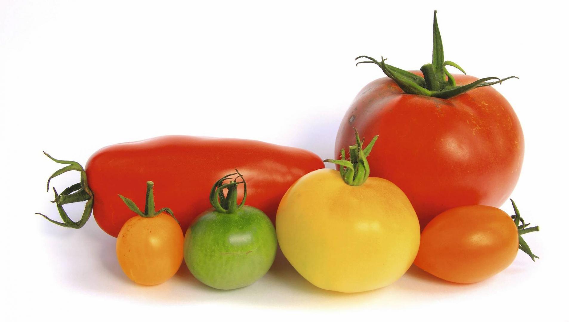 Warzywa Z Własnej Doniczki E Ogrody