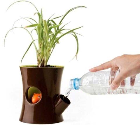Samoobsługowe Podlewanie Roślin Podczas Urlopów E Ogrody