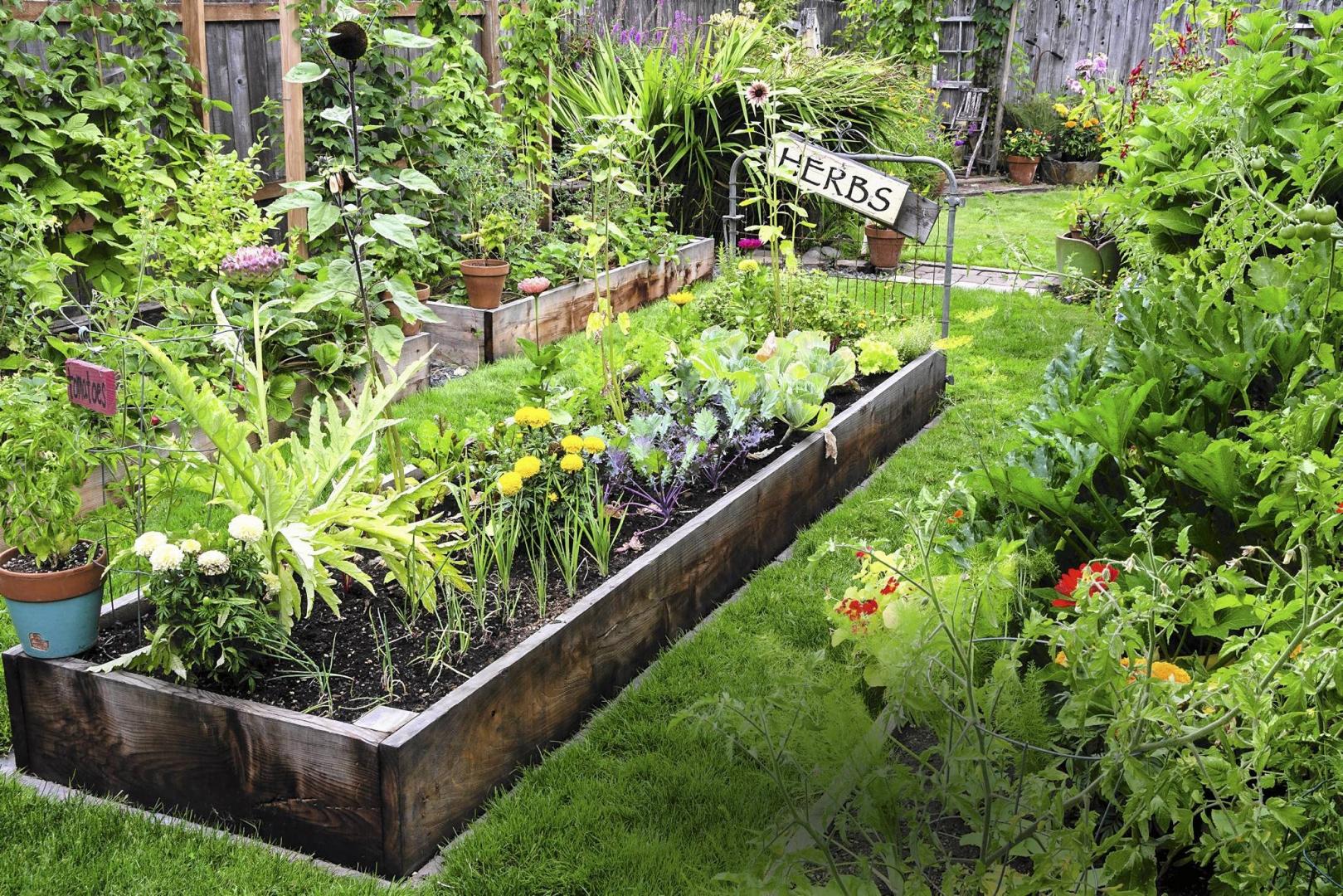 Z Czego Zrobić Podwyższoną Rabatę E Ogrody