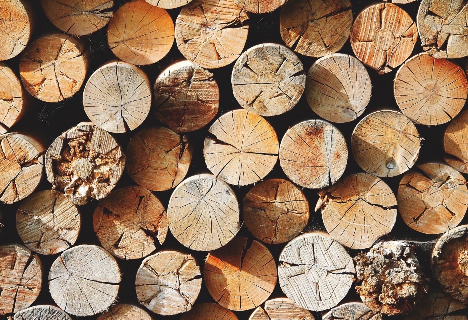 Jak Przygotować Drewno Do Kominka Jakie Drewno Do Kominka