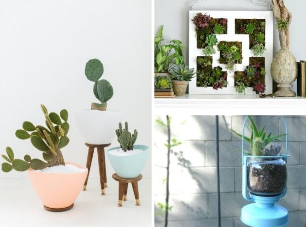 9 Pomysłów Na Zieleń W Domu Z Wykorzystaniem Produktów Z