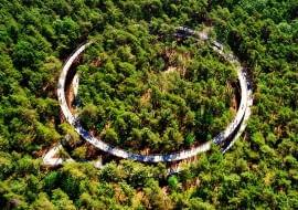 Ścieżka rowerowa w koronach drzew w Belgii. Proj. Burolanschap i Gregorio & Partners