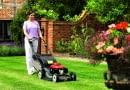 pielęgnacja trawnika