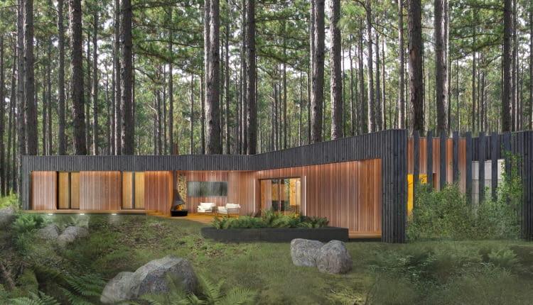 Moody-Woody House. Proj. 3DPROJEKT architektura
