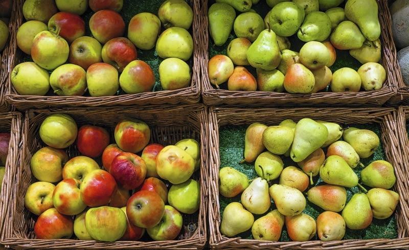 Do dłużeszego przechowywania wybieramy tylko owoce bez uszkodzeń i bez objawów chorób