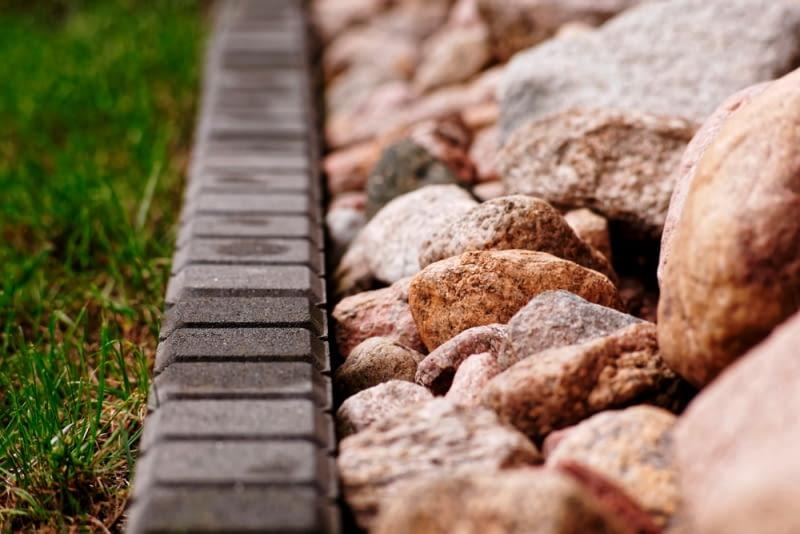 Czym i jak nawozić, by wzmocnić glebę przed zimą?
