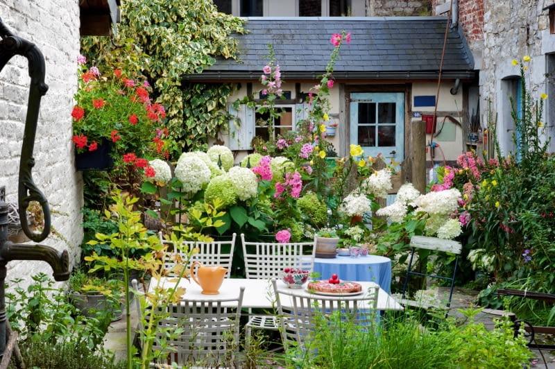 Idylla wśród kwiatów - ogródek pełen kwitnących hortensji bukietowych, malw i pelargonii (w wiszącej donicy) przypomina kolorowy bukiet.