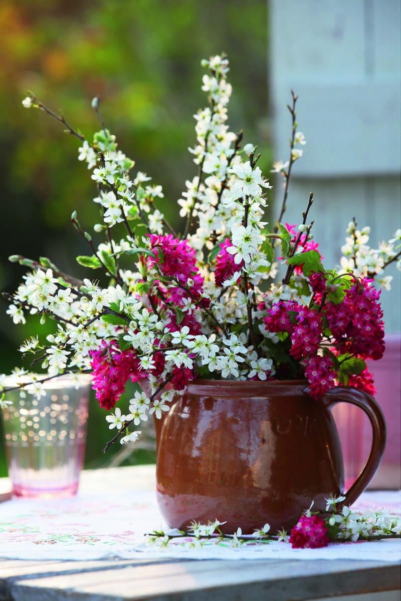 Bukiet z gałązek kwitnącej wiśni i porzeczki krwistej świetnie prezentuje się w prostym glinianym dzbanku.