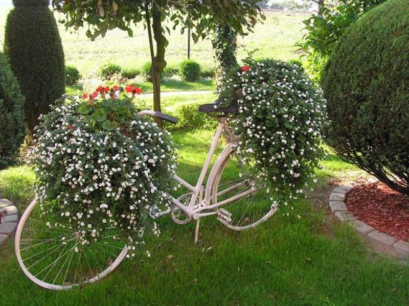 Prace konkursowe - rower w ogrodzie