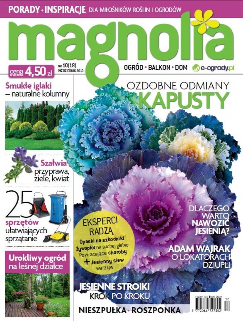 Magnolia Październik