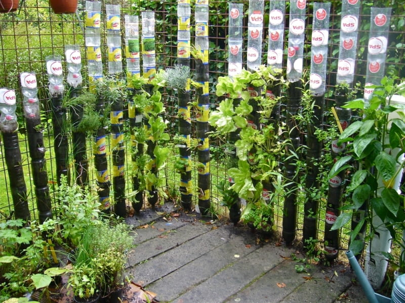 Nic nie stoi na przeszkodzie, aby altanę lub taras otoczyć parawanem z wertykalnym ogrodem z butelek PET. Trzeba tylko przez jakiś czas nie wyrzucać plastikowych butelek bo do tej budowli będą nam potrzebne w większej ilości. Więcej na: www.thegardenglove.com