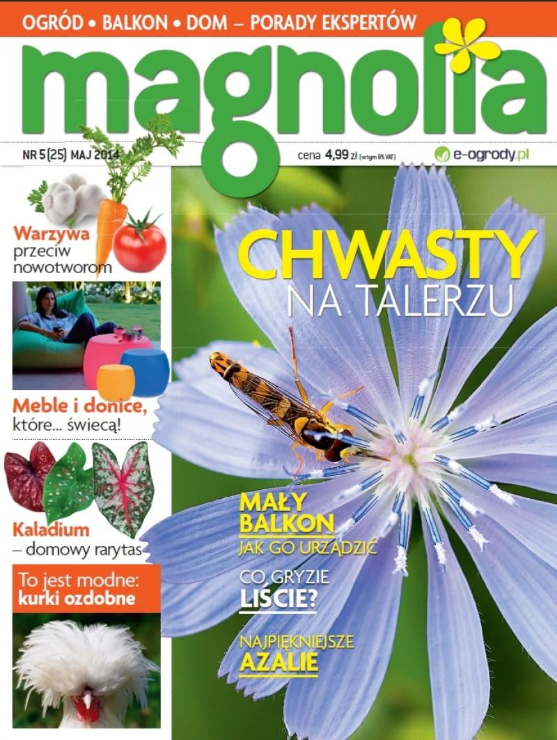 Magnollia