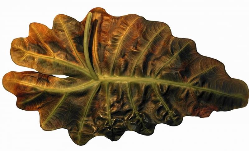 Liście alokazji porażone przez zgniliznę bakteryjną należy ściąć. Na zdjęciu z lewej: zdrowe zielone liście.
