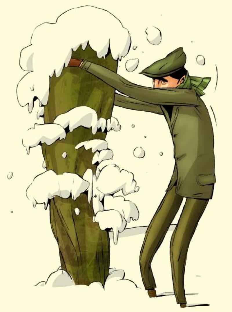 Mokry śnieg grozi połamaniem iglaków, szczególnie kolumnowych odmian, dlatego warto go często strząsać a krzewy obwiązywać