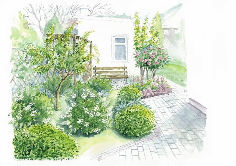 projekt z drzewami owocowymi