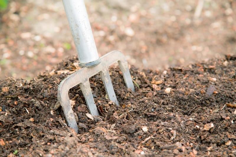 Jak Przygotowac Glebe Pod Warzywnik E Ogrody Porady