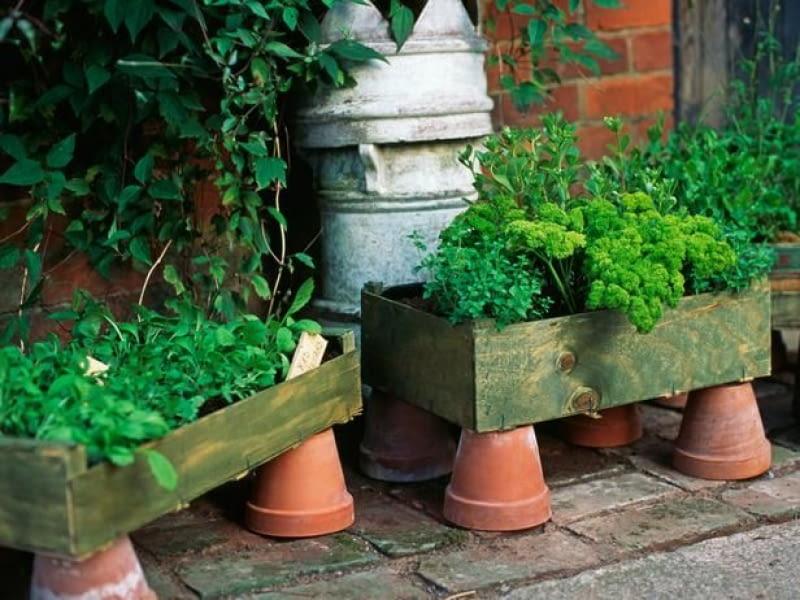 23 Pomysły Na Tani Ogród Jak Urządzić Niedrogi Ogród