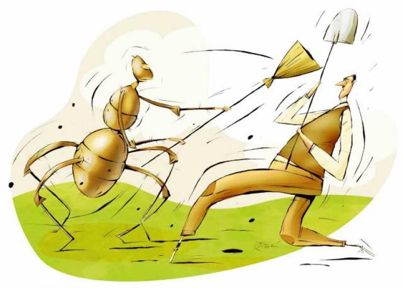 Mrówcza Inwazja E Ogrody