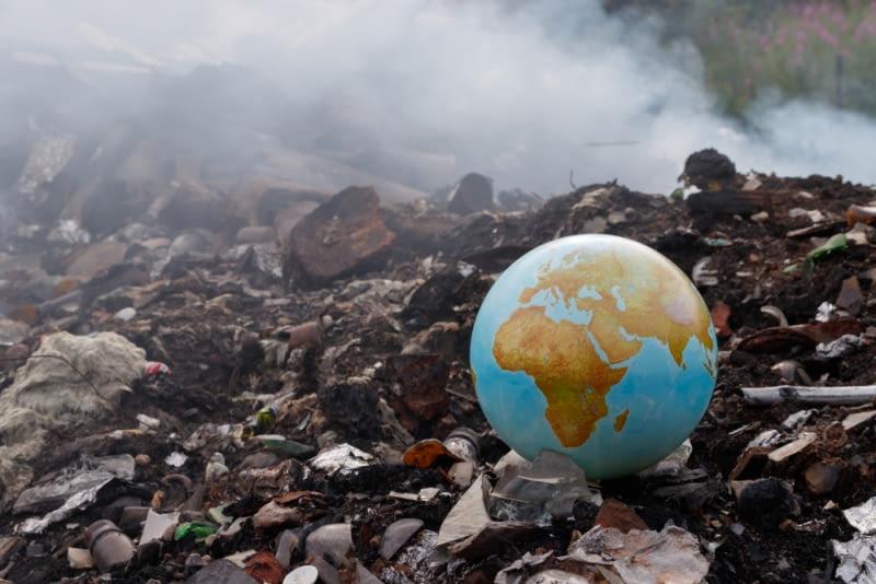 Dzień Ziemi. Zamiast wyrzucić na śmietnik wstawiamy do ogrodu.