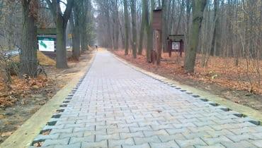 Kostka Bauma w Lesie Bielańskim