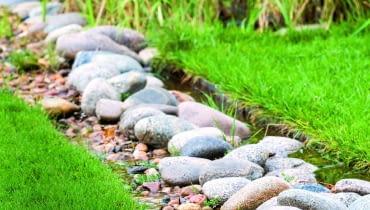 w zagłębieniu terenu położono czarną agrowłókninę i usypano na niej kamienie. Taką 'rynną' nadmiar wody spływa z trawnika.