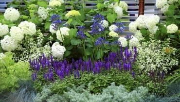 10.07.2008 LONDYN HAMPTON COURD PALACE WYSTAWA KWIATOW I OGRODOW FLOWER SHOW 2008 FOT. ARKADIUSZ SCICHOCKI / AGENCJA GAZETA