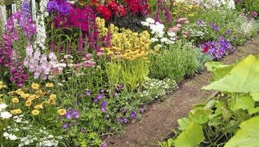 The Home Guard-ener. Designed by: Gary Hillery & Ken Walton. Large Garden. RHS Flower Show Tatton Park 2013.