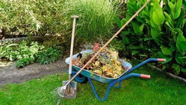 Na kompost zbieramy chwasty, ściętą trawę, obierki oraz opadłe liście.