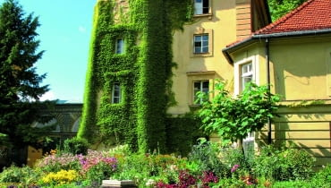 Fragment zamku wŁańcucie zwieżą porośniętą winobluszczem. Ujej stóp widoczna rabata bylinowa izegar słoneczny.