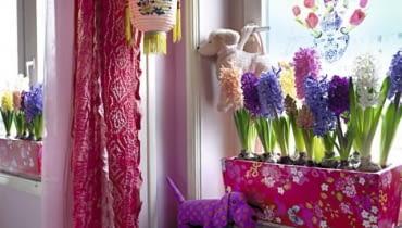 Wielokolorowa kompozycja z różnych odmian hiacyntów. Taki barwny miszmasz świetnie pasuje do dziecięcego pokoju