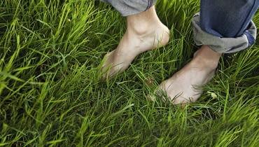Jeśli bardzo lubimy spacery boso po trawie, wybierajmy godziny popołudniowe, kiedy kleszcze są najmniej aktywne.