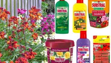 nawozy, kwiaty, ogród, balkon, rośliny