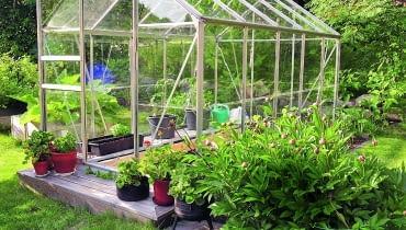 Lekka, wolnostojąca szklarnia z aluminiową konstrukcją i wypełnieniem z poliwęglanu jest idealna do ogrodów średniej wielkości.