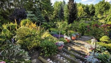 SLOWA KLUCZOWE: Lodz dom i ogrod pani Haliny lato lipiec lodzkie ogrod poland polska ul. Skowroncza 19