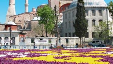 Kobierzec ztulipanów wcentrum miasta 'utkany' na wzór perskich dywanów.