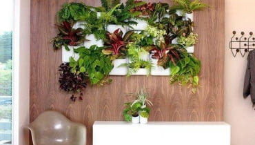 kwiaty we wnętrzu, rośliny doniczkowe, aranżacje z roślin doniczkowych, aranżacje na ścianie