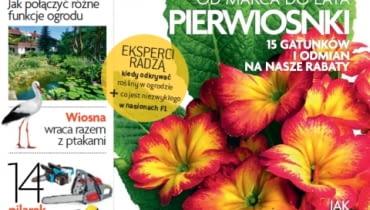 Okładka miesięcznika Magnolia 03/2013
