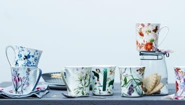 rosenthal, porcelana
