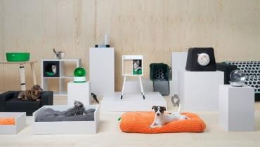 Kolekcja dla zwierząt domowych IKEA LURVIG