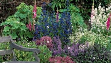 Projekt rabaty. Letnia rabata w odcieniach fioletu, różu i bieli