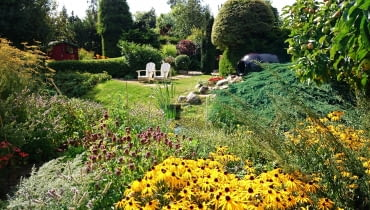 Ogród wiejski pełen purpury i zółci
