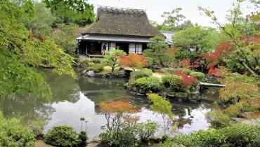 Nieodłącznym elementem Japońskiego ogrodu krajobrazowego jest staw stylizowany na naturalny zbiornik wodny.