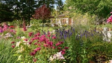 Imponująca rabata przed domem, a na niej urokliwe pysznogłówki, kopry włoskie 'Bronze', przetaczniki kłosowe 'Christa' i lilie orientalne to dopiero zapowiedź bogactwa tutejszej roślinności.
