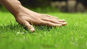 Czy wiesz jak oszczędzać w ogrodzie?
